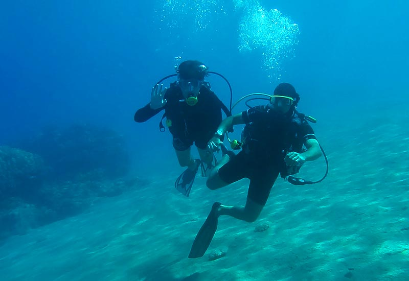 Placencia Belize Diving Tours